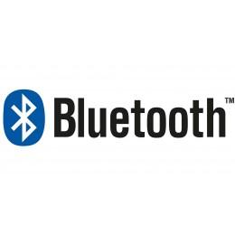 Système sonore avec Bluetooth pour Baignoires balnéo